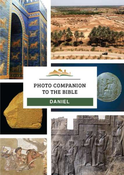 DVD Cover DANIEL 800